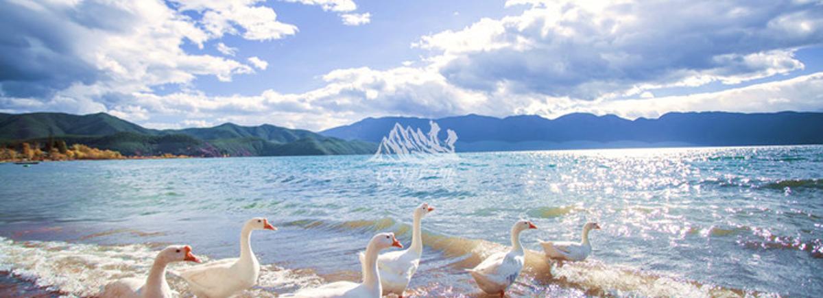 目的地简介: 泸沽湖:带您深入泸沽湖环行近3天,从大落水、里务比岛、里格半岛等不同角度,全方位欣赏最美泸沽湖,其最韵味十足的原生态美景画面,尽在360度深度体验中。 双廊洱海:在绝色双廊看最美洱海,双廊是欣赏洱海的最佳地点,还是一个将多情发挥到极致的地方,无数来过这里的人都感叹:来双廊才知道什么是真正的生活,来双廊度假,才是给自己心灵真正的休假。 大理:大理古城,是阳光、自由的代名词,是中国最宜居的理想国,是流行于中国大城市文人圈里的时尚话题。 沙溪古镇:茶马古道上唯一幸存的古集市, 一个真正